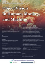 Object Vision in Human, Monkey, and Machine